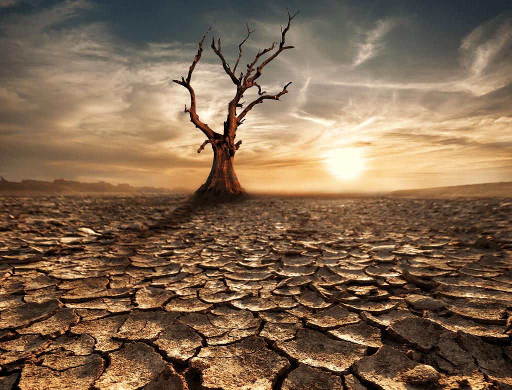 衛生條件匱乏的國家,因水資源汙染造成相關疾病導致國家生產力下降